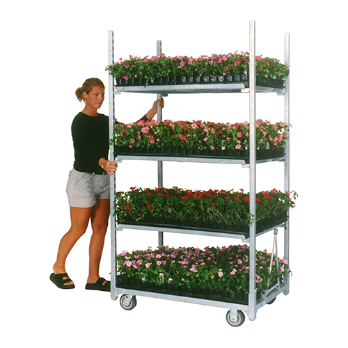 Cart Loaded with flowers